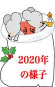 2020年の様子